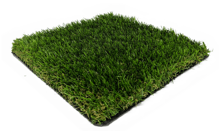 Rosemary 38mm - Artificial Grass